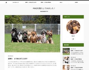 MAGのブログのイメージ