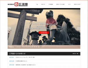 SKIN使用サイト3