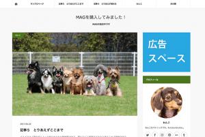 MAGの広告スペース