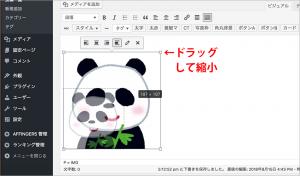 WING画像アニメーション3