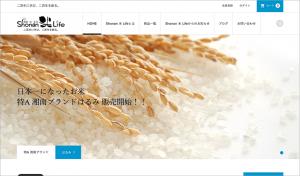ICONIC使用サイト3