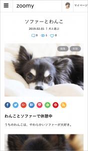 ZOOMYのブログ