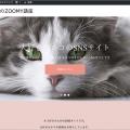 【ZOOMY使い方講座】自分オリジナルのSNSサイトを作ろう。超簡単です!